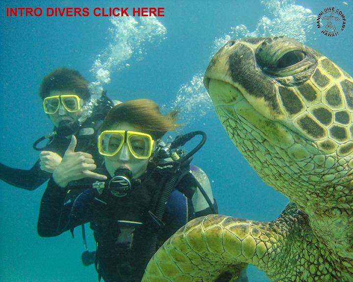 Manini Dive Company Hawaii The Small Company That Still Cares