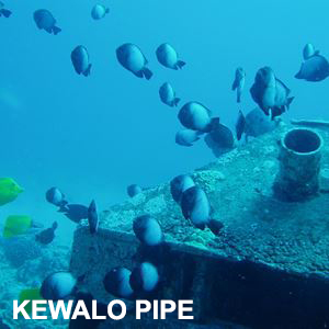 Pipe Dive